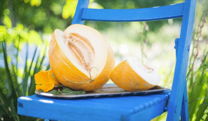 Suco detox com melão