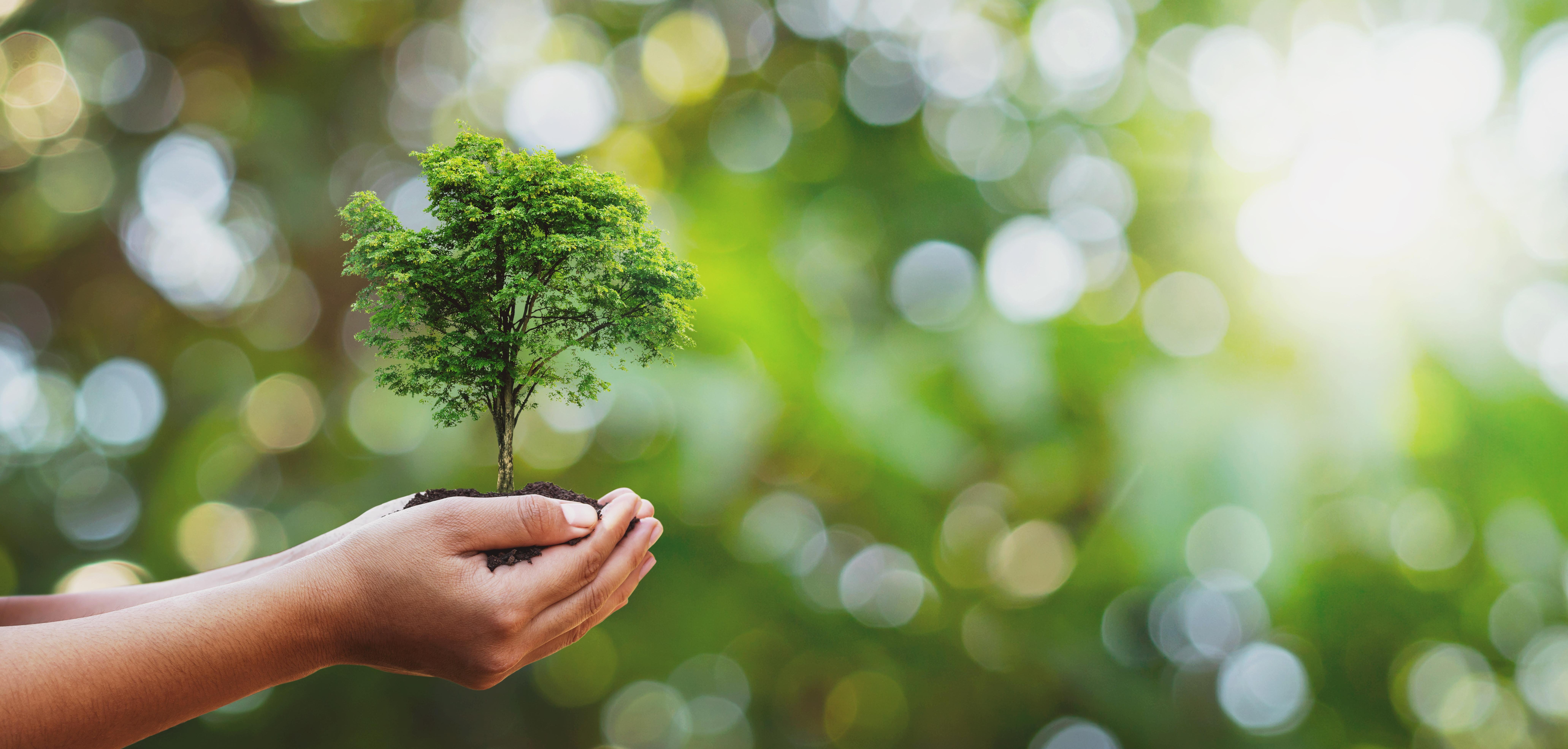 Seja um consumidor consciente. Recicle!