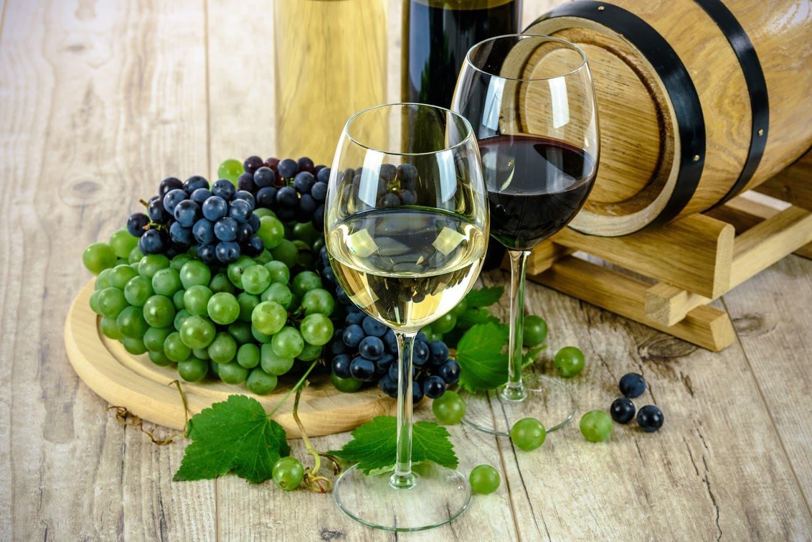 Taças com vinhos chilenos e uvas ao fundo