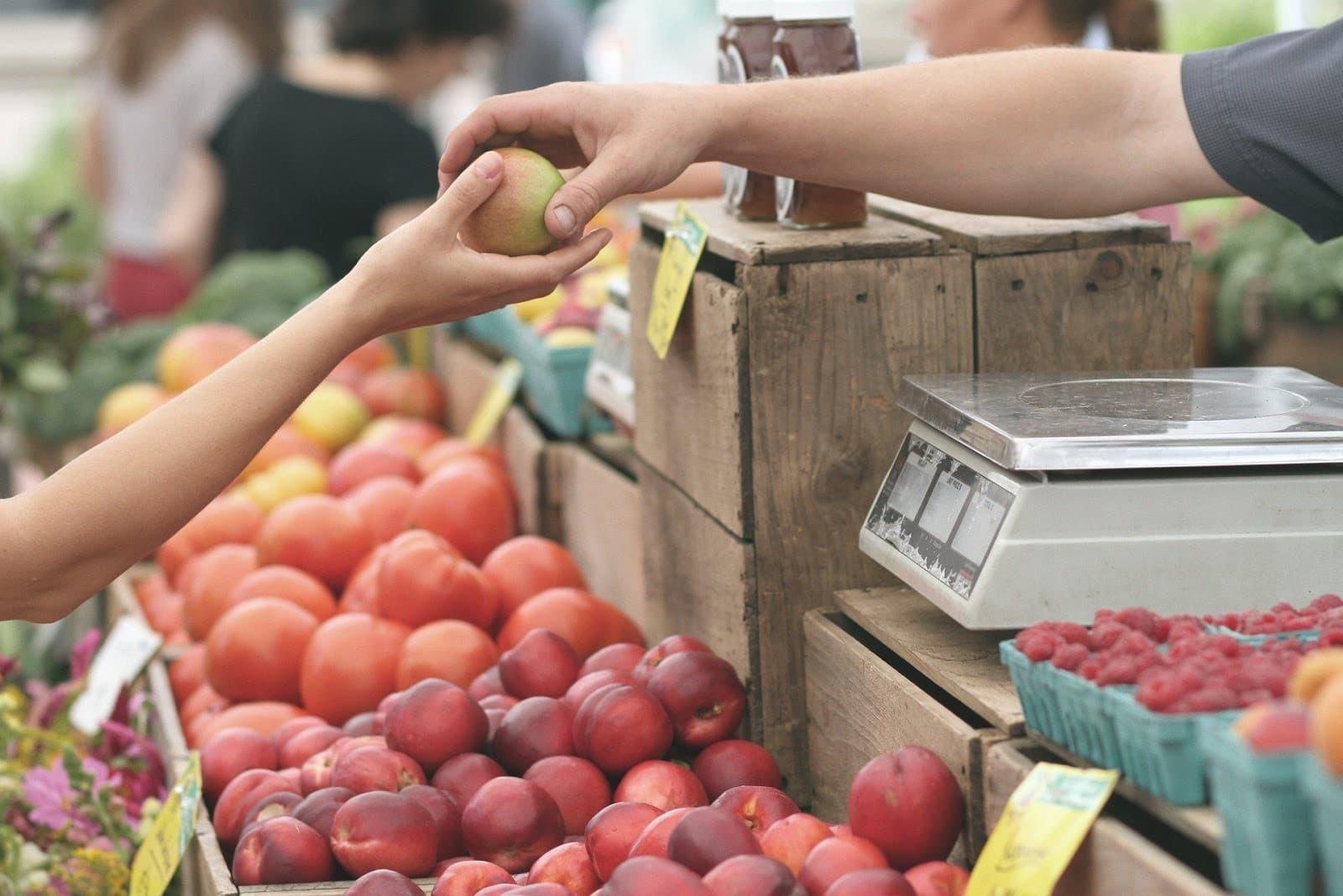 Frutas low carb – quando consumir e quais são permitidas